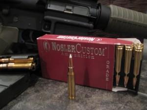 Nosler Custom .308